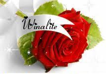 компания Winalite